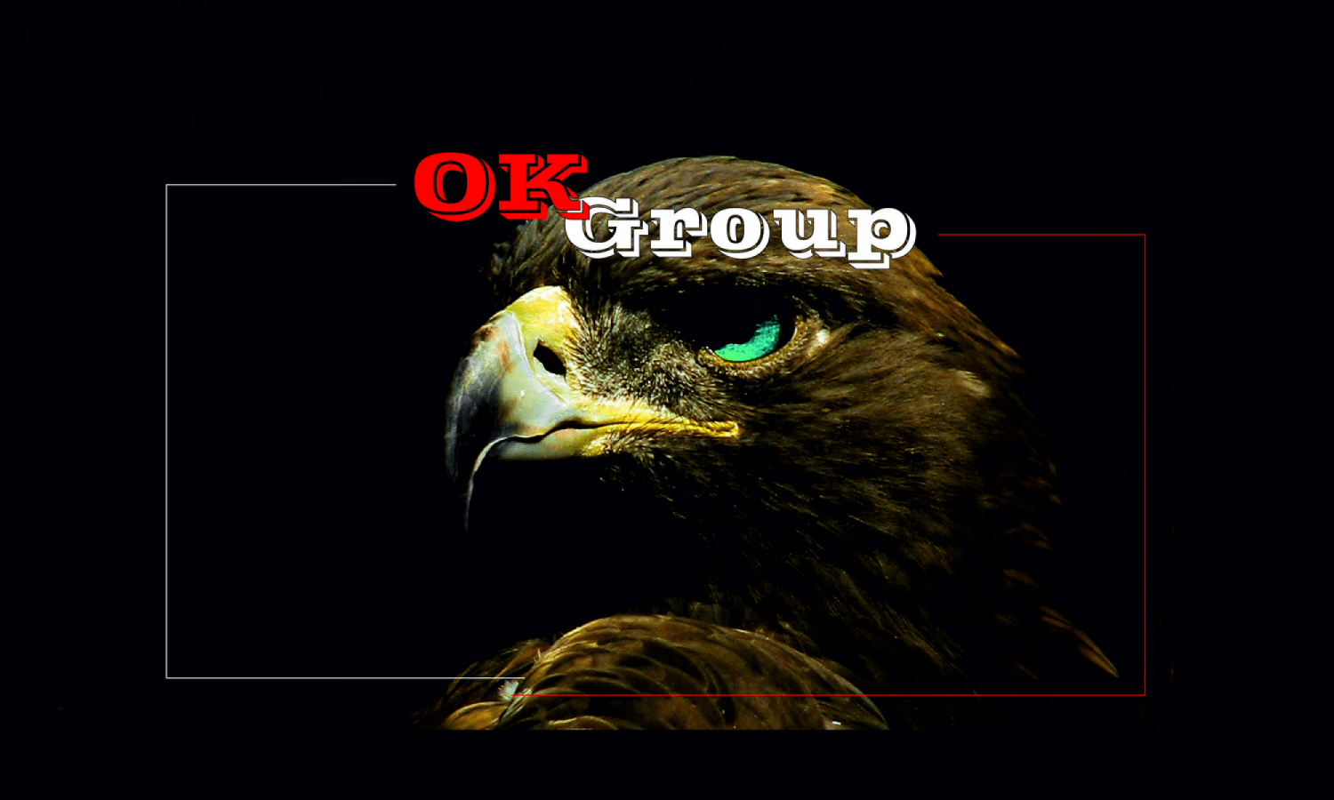 "Компания ""OK-Group"""